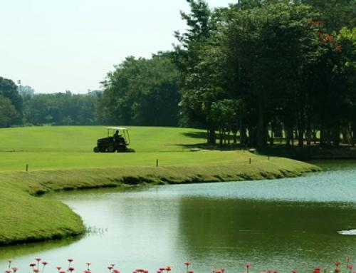 Evita tomar decisiones con miedo : Las 2 claves del golfista